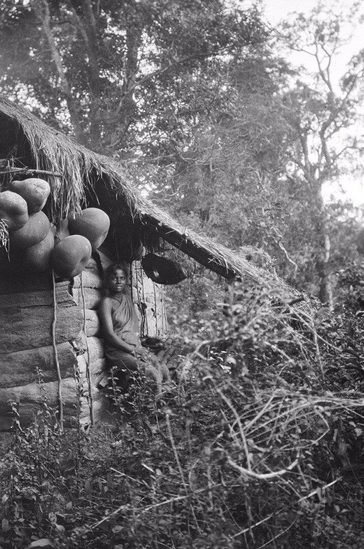 134. Женщина народности ведда возле хижины