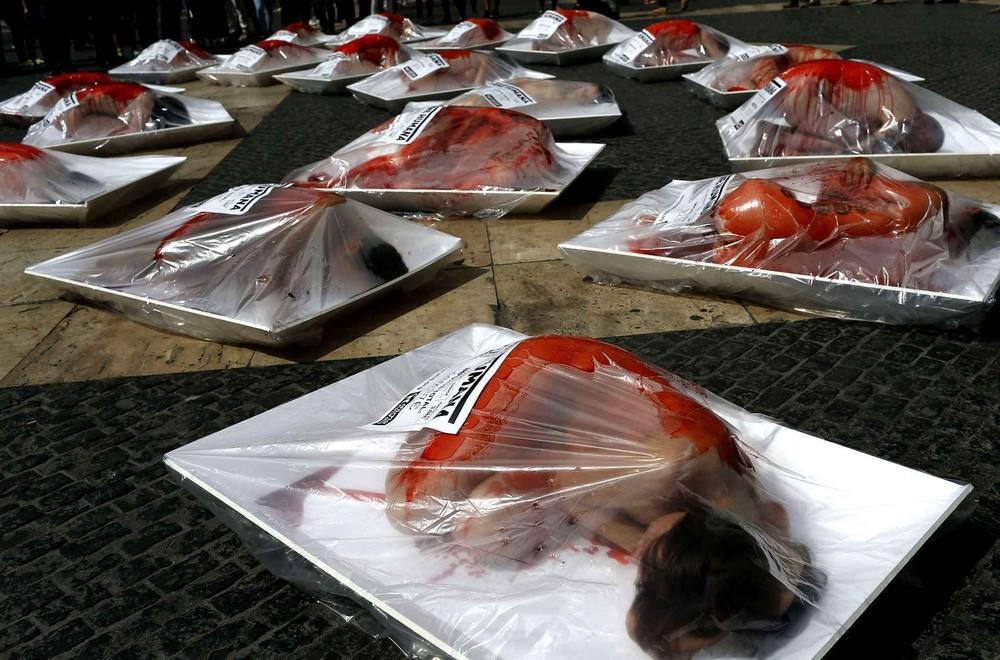 Голый протест защитников животных в Барселоне