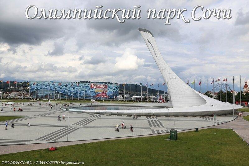 Олимпийский парк Сочи.jpg