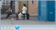 http//img-fotki.yandex.ru/get/939/2431200.2a/0_134c66_24f425fc_orig.png