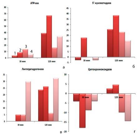 Ферментативная активность клеток врожденного иммунитета с КФС