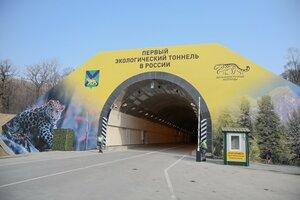Незнакомый леопард появился в заповеднике Приморского края?