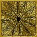 золото на черном 524.png
