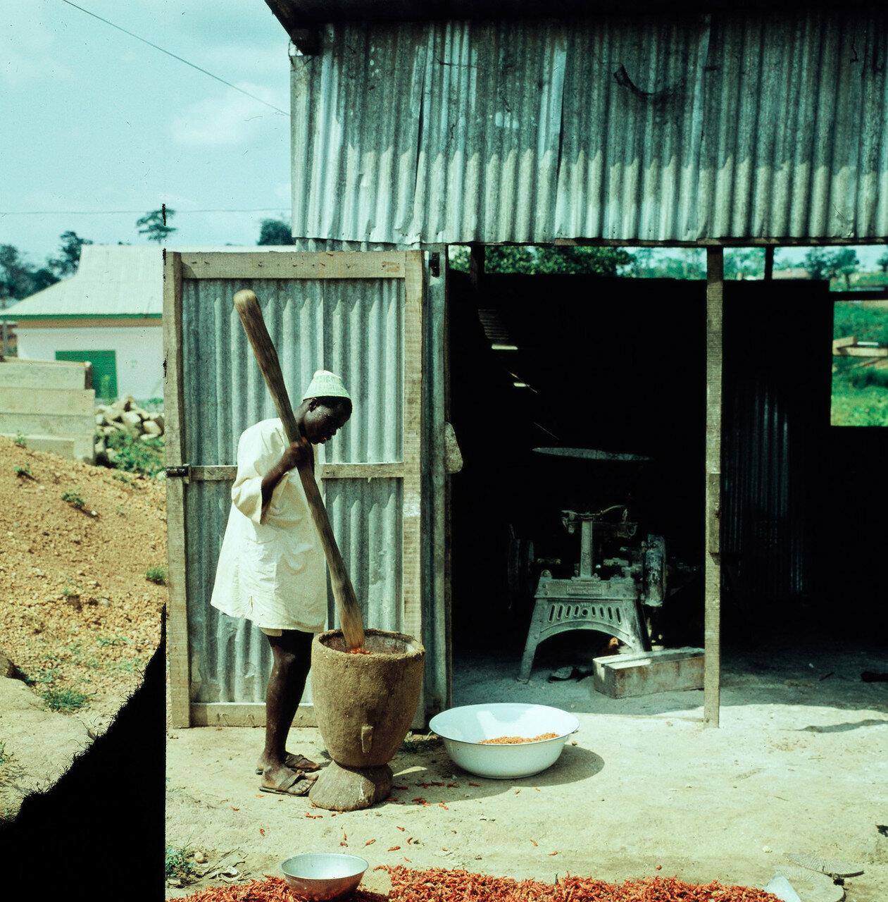 Ода. Человек с пестиком и деревянной ступкой