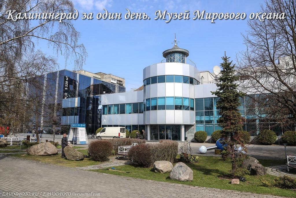 Калининград за один день. Музей Мирового океана.jpg