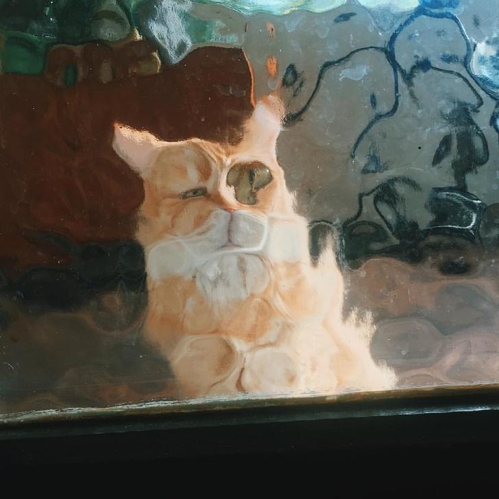 14доказательств того, что быть котом— настоящее искусство (13 фото)