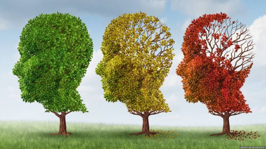 Эпилепсия: болезнь, о которой стесняются говорить и придумывают много мифов
