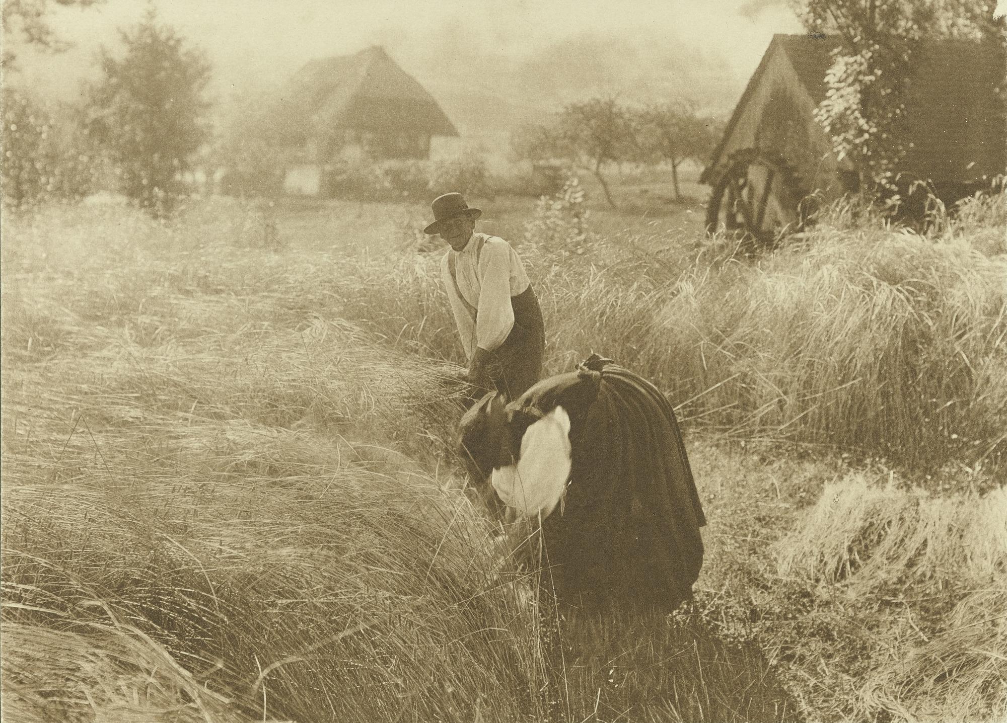 1900. Раннее утро