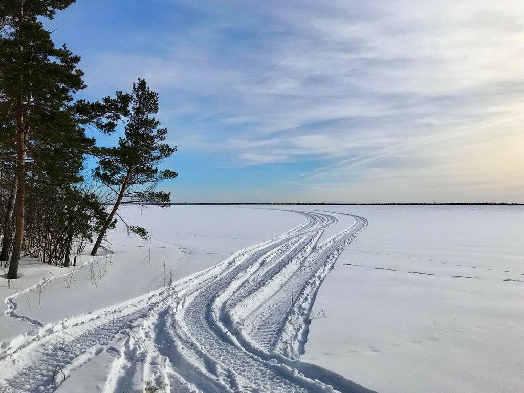 Сверкает поле перед зимнем лесом, и белая дорога вдаль идет.