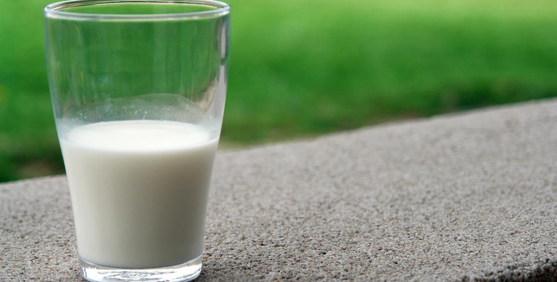 Доля фальсифицированной молочной продукции вМосковском регионе составляет более 11% — Россельхознадзор
