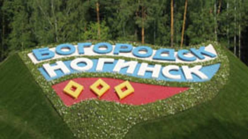 20120905_16-09-Жители Ногинского района проголосовали за его переименование в Богородский