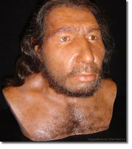 100924-mujchina-neandertalec-rekonstrukciya.jpg