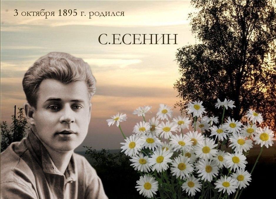 С днем поэзии! 3 октября 1895 г. родился С. Есенин. Ромашки
