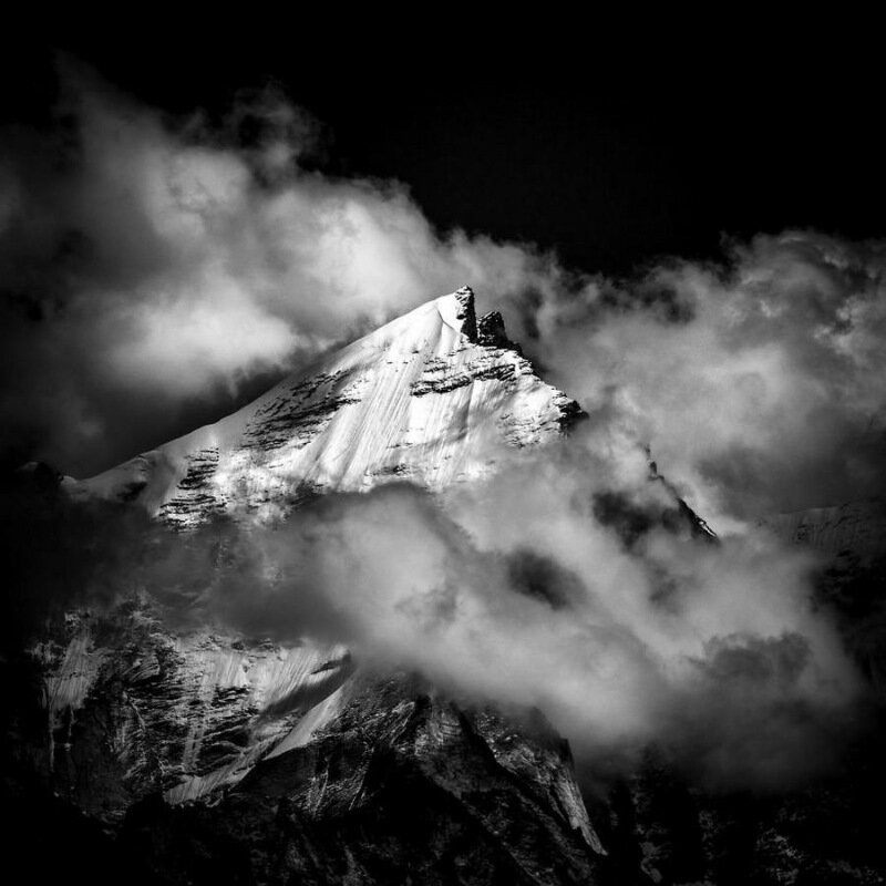 Самые красивые фотографии конкурса Sony World Photography Awards 2017
