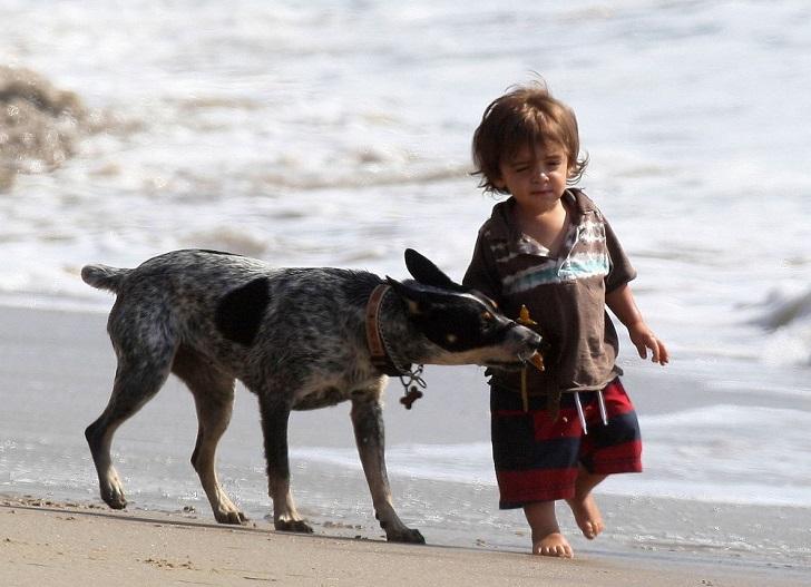 Семилетний Леви — старший сын актера Мэттью Макконахи и модели Камилы Алвес. В свои семь лет малыш у