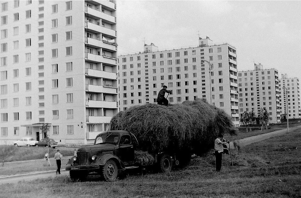 2. 1967 г.