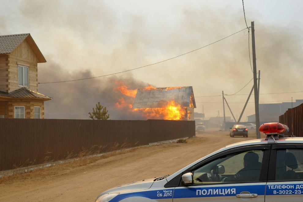Последствия пожаров в Хакасии. Видео:   По результатам проверки Рослесхоза, из 85 субъектов