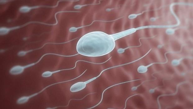 Спроектирован гормональный мужской контрацептив с продуктивностью 96%