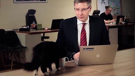 Кошкино право: «Прямые вопросы» городских жителей кмэру Риги прервал черный кот