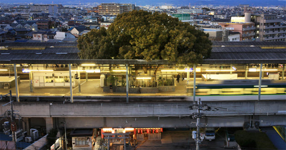 Kayashima: The Japanese Train Station Built Around a 700-Year-Old Tree (9 pics)