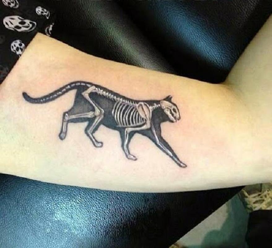 30 tatuagens para os catlovers se inspirarem
