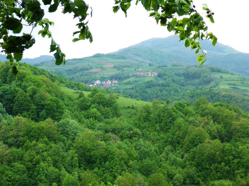 красивый пейзаж в сербии с горой и деревней