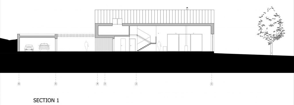 section1_21.jpg