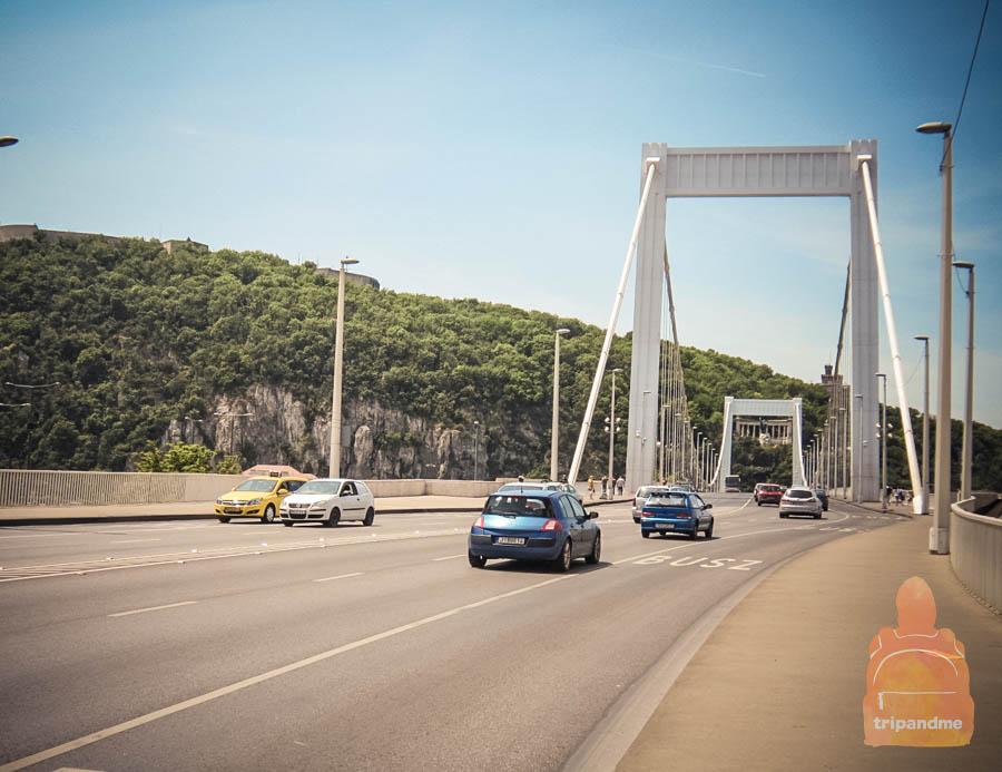 Мост также называют мостом Элизаветы