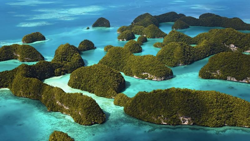 Острова, покрытые густой растительностью и напоминающие с воздуха грибы, являются главной достоприме