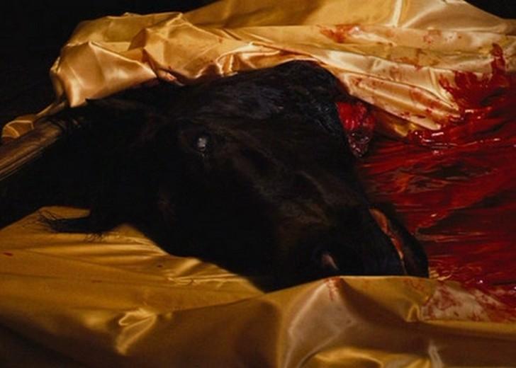 Голова лошади в постели была настоящей. Это был не муляж — отрезанную голову принесли с местной бойн