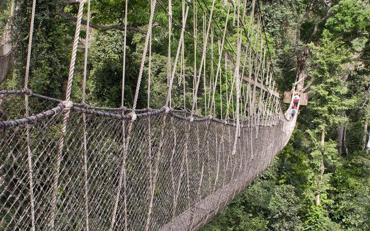 Мост Canopy Walk, Гана.
