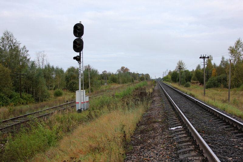 Входной светофор ЧЛ станции Земцы со стороны Жарковского. Л - Ломоносово