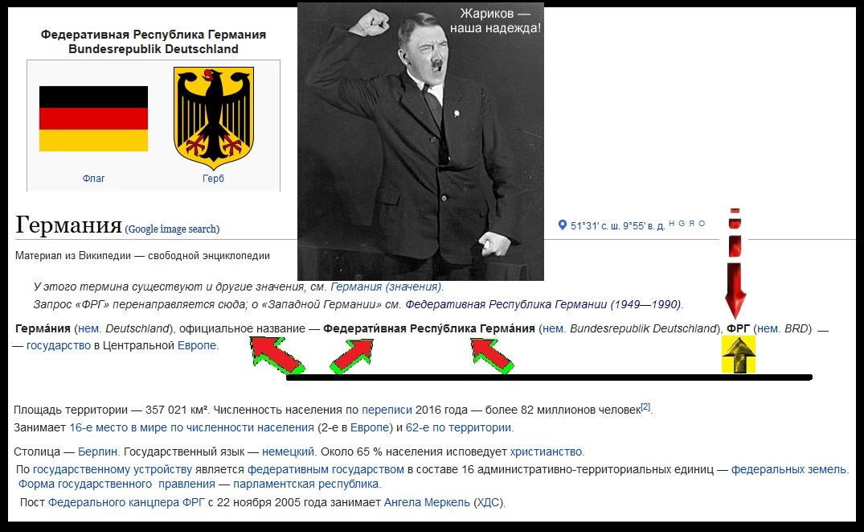 Жариков, Германия и Гитлер