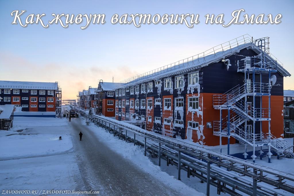 Как живут вахтовики на Ямале.jpg