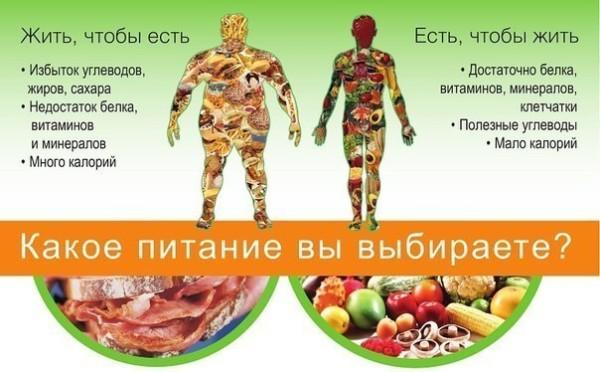 Какое питание вы выбираете