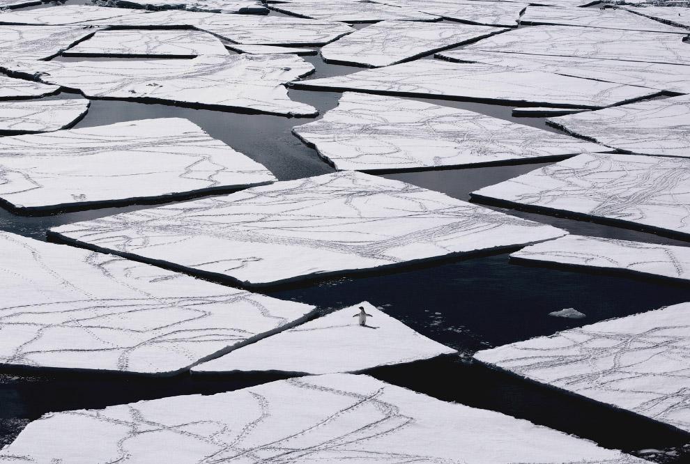 9. Помимо полюса холода, в Антарктиде располагаются точки самой низкой относительной влажности
