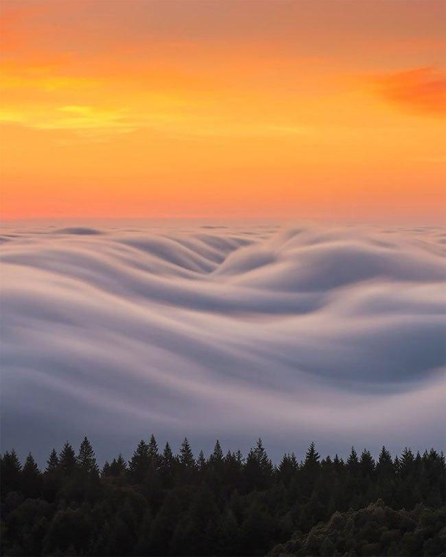 Захватывающие виды туманного Сан-Франциско от Ника Штейнберга