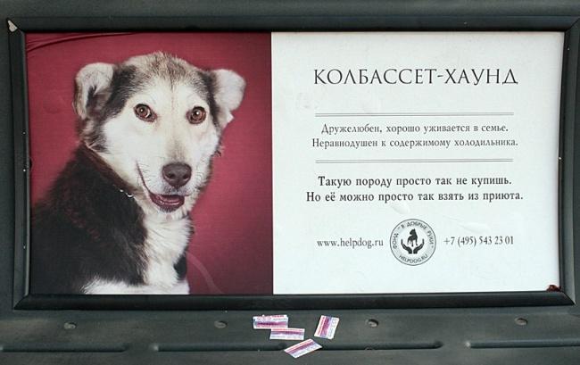 Человечная реклама отагентства G2Russia  Занимайся чтением
