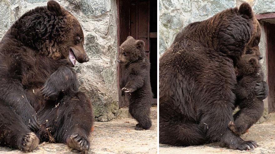 — Мама, мне так грустно! — Иди обниму!