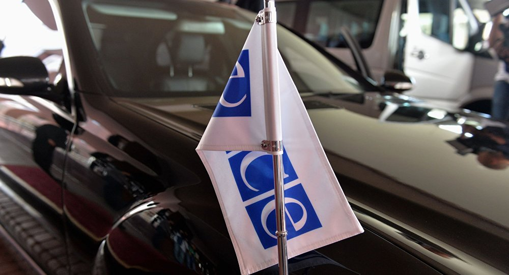 Члены Совфеда встретятся сделегацией США врамках совещания ПАОБСЕ