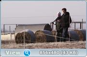 http//img-fotki.yandex.ru/get/94596/40980658.1af/0_14ef15_74ac_orig.png