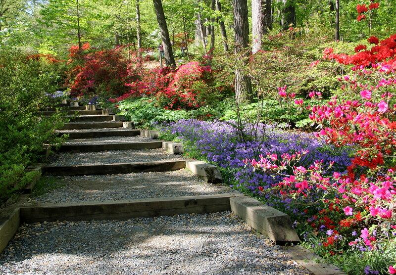 Лестница в райском саду.