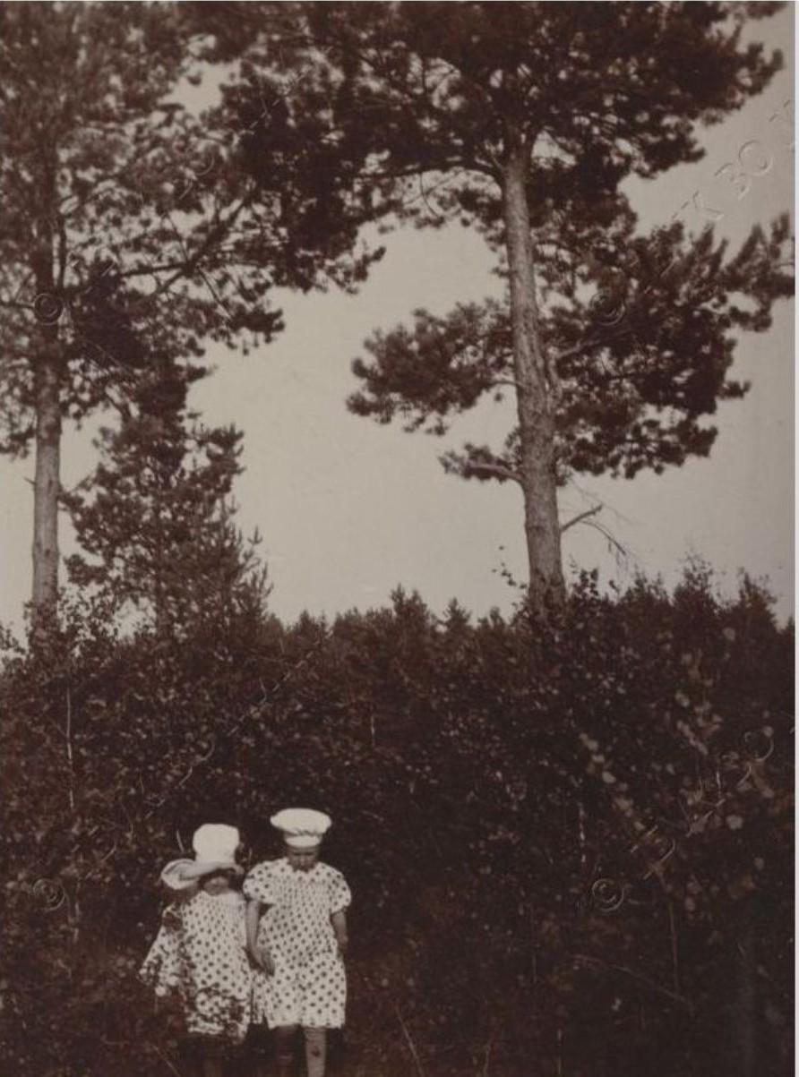 Фото дочерей художника. 1895