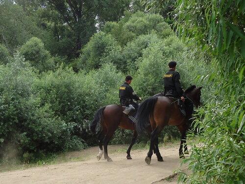 Конный патруль
