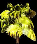 R11 - Palms - 2013 - 3 - 018.png