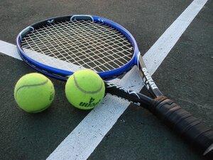 Молдавский теннисист в паре с румыном — одержали победу