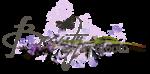RR_LavenderFields_WA (1).png