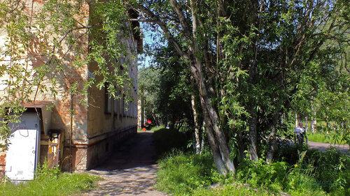 Фотография Инты №5213  Аллея с восточной стороны Геологической 1 16.07.2013_12:52