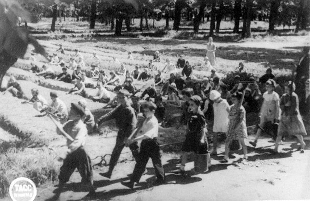Школьники Дзержинского района идут на работу на огороды, находящиеся в Летнем саду. 10 июня 1943 г. Ленинград.
