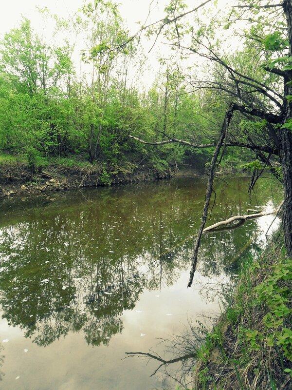 У реки, окрестности Горячего Ключа